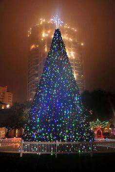 Christmas in St. Petersburg, Florida