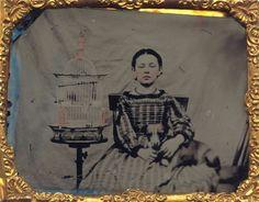 Antique Photos, Vintage Photos, Post Mortem Pictures, Post Mortem Photography, Frozen In Time, Daguerreotype, Pet Birds, 19th Century, The Past