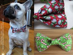 Holiday Dog Cat Pet Bow Ties & Bows - Red Snowmen or Green Candy Cane by Lavender Paper Hearts