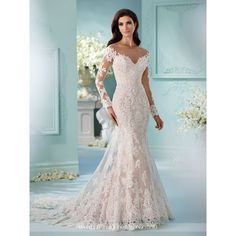 Illusion and Lace Long Sleeve Wedding Dress David Tutera ❤ liked on Polyvore featuring dresses, boat neck dress, david tutera dresses, longsleeve dress, long-sleeve fit and flare dresses and beaded dress