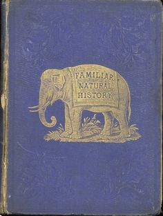 Familiar Natural History, with Descriptions  - Front Cover 1. From the University of Florida Baldwin Library of Historical Children's Literature.