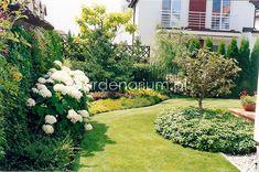 Garden, Plants, Projects, Garten, Lawn And Garden, Flora, Gardening, Outdoor, Plant