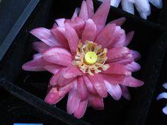Dália cor de rosa, em papel pergamano, feito no Atelier DORILA RIBEIRO