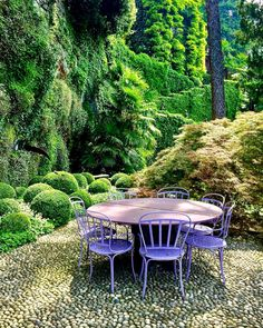 The creative world of Romeo Sozzi and Promemoria. Sozzi's Lake Como garden. Photo by Stacey Bewkes for Quintessence Rustic Gardens, Outdoor Gardens, Outdoor Spaces, Outdoor Living, Outdoor Decor, Garden Sitting Areas, Evergreen Garden, Garden Shop, Garden Landscaping