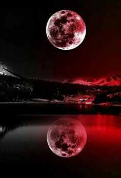 Art Discover Nature Landscape wallpaper by PerfumeVanilla - fa - Free on ZEDGE Beautiful Nature Wallpaper Beautiful Moon Cool Wallpaper Beautiful Landscapes Purple Galaxy Wallpaper Moon Photography Landscape Photography Planets Wallpaper Pink Moon Cute Galaxy Wallpaper, Night Sky Wallpaper, Purple Wallpaper Iphone, Planets Wallpaper, Wallpaper Space, Scenery Wallpaper, Landscape Wallpaper, Cute Wallpaper Backgrounds, Dark Wallpaper