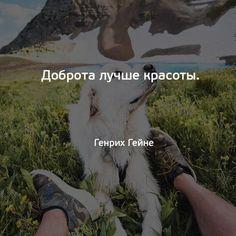 В точку! If Rudyard Kipling, Thankful, Wisdom, Thoughts, Words, Funny, Quotes, Inspiration, Life