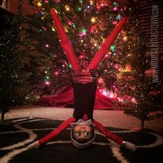 Fitsie the Elf The Elf, Elf On The Shelf, Yoga Inversions, What Is Your Goal, For Stars, Give It To Me, Christmas Tree, Exhausted, Holiday Decor