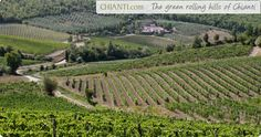 Countryside in Chianti, Italy. Full of vineyards that make such delicious wine, how can you not want to go?
