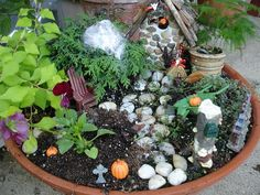 fairy gardens | Wordless Wednesday: Fairy Gardens | The Daily Waffle
