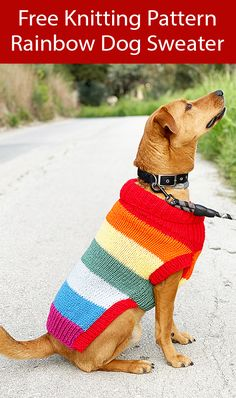 Pet Knitting Patterns- In the Loop Knitting Knitted Dog Sweater Pattern, Dog Coat Pattern, Knit Dog Sweater, Dog Sweaters, Sweater Patterns, Coat Patterns, Knitting Patterns For Dogs, Dog Clothes Patterns, Free Knitting