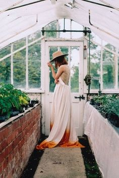 ombre in a greenhouse.