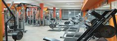 Flexity Gym is best top gym In chandigarh And top trainers in chandigarh, Flexity Gym near Sector 26, Chandigarh. Browse membership fees and book one day passes.