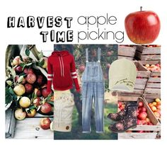 Designer Clothes, Shoes & Bags for Women Apple Harvest, Apples, Gap, Denim, Polyvore, Women, Apple, Jeans, Woman