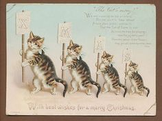 Helena Maguire. Cats carrying signs spelling 'Xmas.'