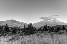 """""""Shasta Shrouded In Clouds"""