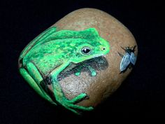 pictures insects painted on rocks | Hand Painted River Rock with any type FROG/ Stone Paintings / Acrylics ...