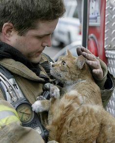 Sauver un chat, il vous le rendra en vous déstressant. In firefighter Dana Brown rescued this cat from an apartment on fire. Firefighters save our pets lives everyday and we love them for that! I Love Cats, Cute Cats, Funny Cats, Crazy Cat Lady, Crazy Cats, Animals Beautiful, Cute Animals, Fluffy Animals, Animals Images