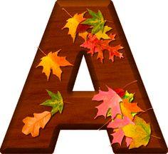 Presentation Alphabets: Cherry Wood Leaves Letter A