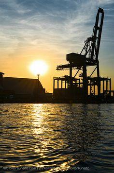 Porto de Santos. O maior da América Latina. (Port of Santos, São Paulo - The biggest port of South America)