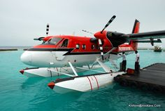 My dream job, Maldivian Air Taxi. Amphibious Aircraft, Ww2 Aircraft, Military Aircraft, Bush Plane, Fly Plane, Pilot, Tourism Development, Flying Boat, Civil Aviation