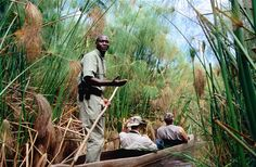 Safari by mokoro, a unique and quintessentially Okavango experience. Image by Mark Newman / Getty Images