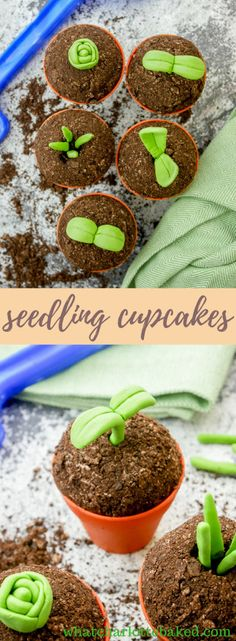 Seedling Cupcakes (in Plant Pots) http://whatcharlottebaked.com/2018/03/31/seedling-cupcakes-plant-pots/
