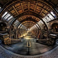 Natural History Museum London by Richard Beresford Harris on 500px