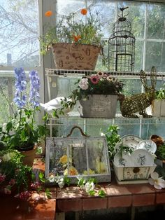 …a quiet life…: beatrix potters gardenening life~ Jain's Greenhouse! - All For Garden Cottage Garden Design, Garden Shop, Dream Garden, Garden Art, Greenhouse Shed, Greenhouse Gardening, Container Gardening, Potting Tables, Shabby Chic Garden