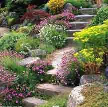 Slope landscaped with erosion control plants (listed on website) and native perennials -