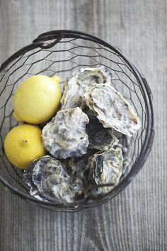 fresh oysters, splash of lemon, shake of tabasco & down the chute!! <3