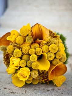 Here comes the bright yellow bouquet!