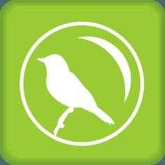 Corsi di Birdwatching