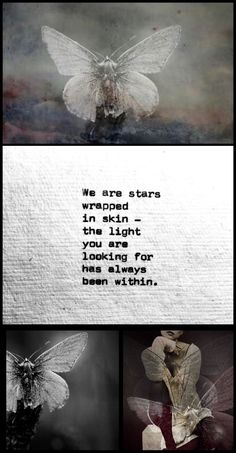 We are stars wrapped in skin ~ the light you are looking for has always been within ༺♡❀♡༻ WILD WOMAN SISTERHOOD™ #wildwomansisterhood #theuniversewithin