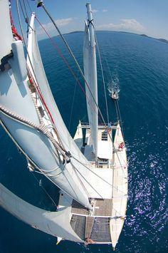 """Wharram Catamaran Pahi 52 """"Pakia tea"""" - Planet Ocean - Sailing Catamaran 'Pakia tea' - Sailing, Marine Biology and Diving"""