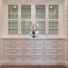Built In Closet Cabinets, Transitional, closet, Brandon Architects