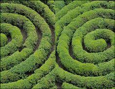 http://in-errances.blog.lemonde.fr/files/2009/06/jardinfrancais-3.1244993712.jpg