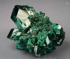 DIOPTASE - CONGO / Mineral Friends <3