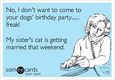 No, I don't want to come to your dogs' birthday party....... freak! My sister's cat is getting married that weekend.