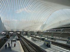 Liège-Guillemins railway station / Santiago Calatrava's lovely station [platforms]