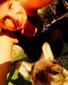 Kangaroo selfie! #play #kangaroo #selfie #australia #currumbinwildlifesanctuary #chillin #luv2eatplayrun by luv2eatplayrun http://ift.tt/1X9mXhV