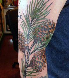 Image from http://nextluxury.com/wp-content/uploads/masculine-pine-tree-branch-and-cones-tattoos-for-men.jpg.
