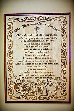 Veterinarian's Prayer  or vet assistant for Lindsay