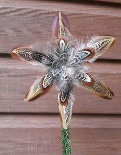 pheasant feather star topper Christmas tree decoration http://countrycraftybits.co.uk/
