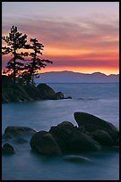 Boulders and trees, sunset, Sand Harbor, East Shore, Lake Tahoe, Nevada. USA ( color)