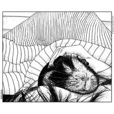Apollonia Saintclair 559 - 20150321 Le cobaye (Small furry thing)A piece from a bigger upcoming publishing commission