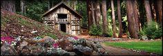 I'VE FOUND IT, I'VE FOUND IT!!!!!! THE PLACE!!!! Stones & Flowers Santa Cruz Retreat | Home