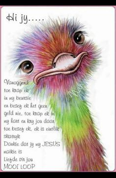 Ostrich art print taken from my original watercolour painting. Available in four sizes from up to A vibrant, colourful and affordable print which is signed by myself, the artist. Posted in a strong postal tube for protection. Art And Illustration, Bird Drawings, Animal Drawings, Bird Art, Rock Art, Painting Inspiration, Painting & Drawing, Pour Painting, Watercolor Art