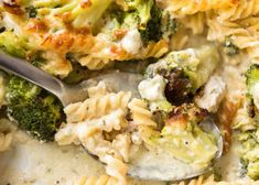 Baked Chicken And Broccoli Pasta Pasta Recipes NoBiggie. Pasta With Zucchini And Tomatoes IFOODreal Healthy . 35 Best Broccoli Recipes Ever Created. Creamy Chicken Pasta Bake, Baked Chicken Pasta Recipes, Broccoli Pasta Bake, Healthy Baked Chicken, Cooked Chicken, Chicken Sausage, Chicken Broccoli, Butter Chicken, Macaroni