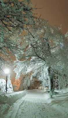 Park Zheleznovodsk, Krai (North Caucasus), Russia I love winter! Winter Magic, Winter Snow, Winter Time, Winter Night, Winter Road, Snow At Night, Winter Walk, Beautiful World, Beautiful Places
