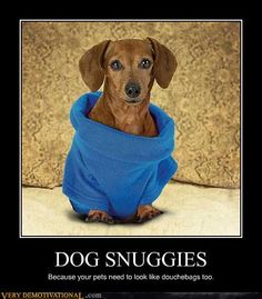 snuggies for pets